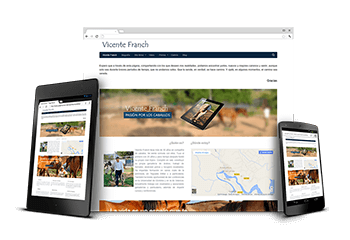 Web de Vicente Franch