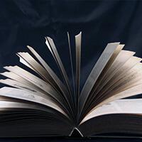 publicar_menu_widget