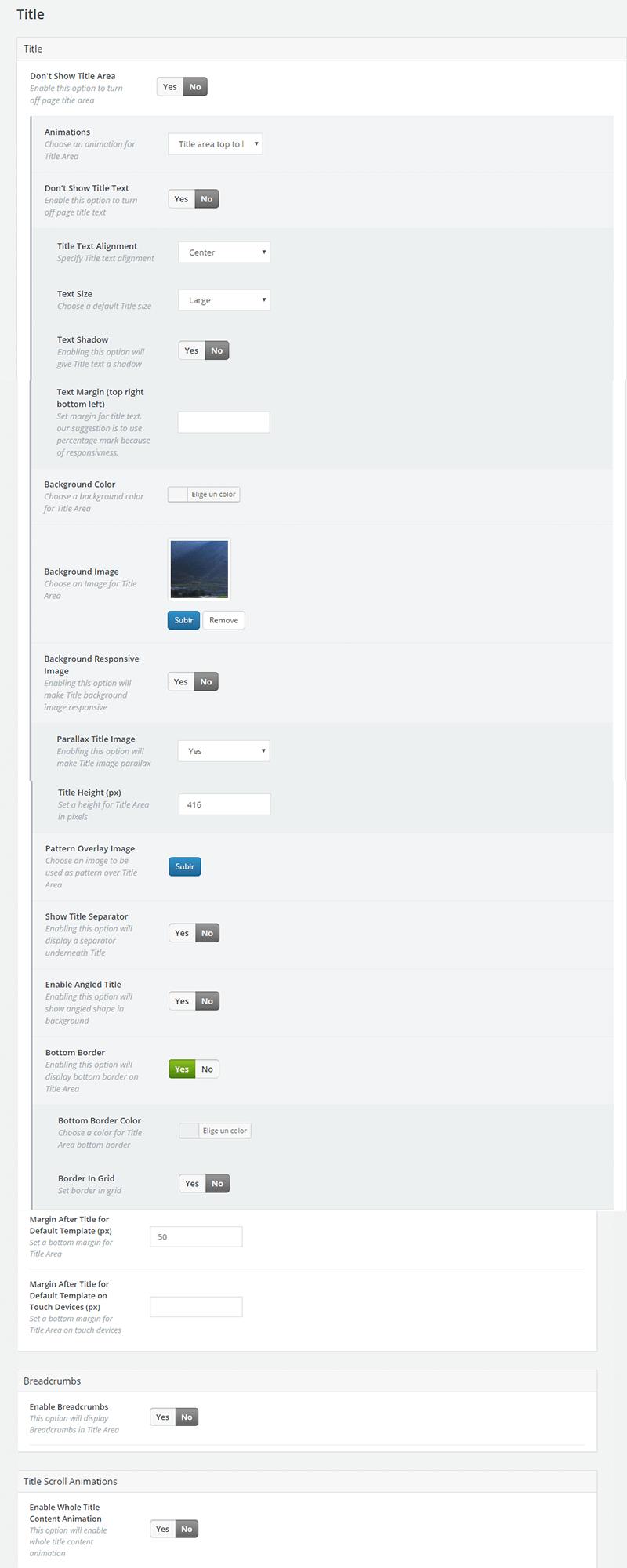 Configuración de las opciones de título en Bridge Theme