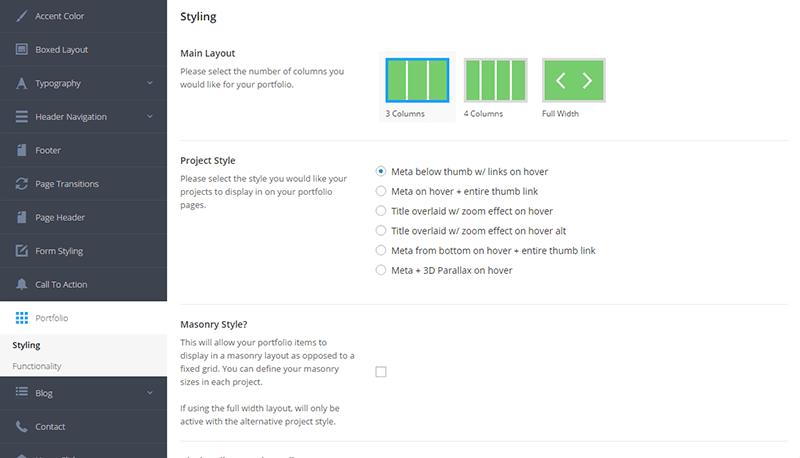 Panel de configuración general en Salient Theme - Portfolio
