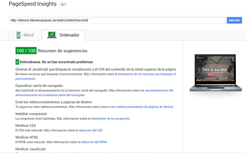 Test de Page Speed para Salient Theme