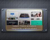 Salient Theme - Examen a fondo a la plantilla Wordpress