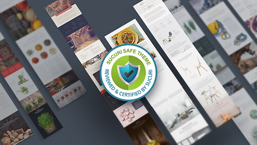 Diseñador WordPress - Web segura con Divi