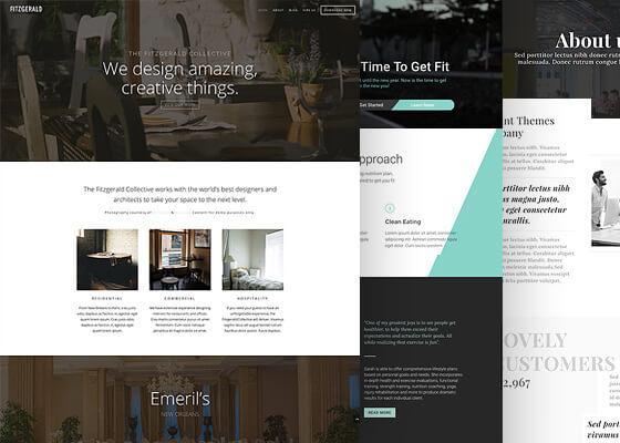 Diseñador Web - Diseño web Starter con Divi
